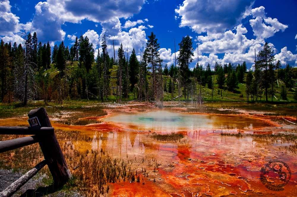 que ver en Yellowstone