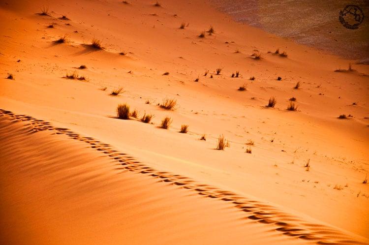 Luz del desierto Marruecos