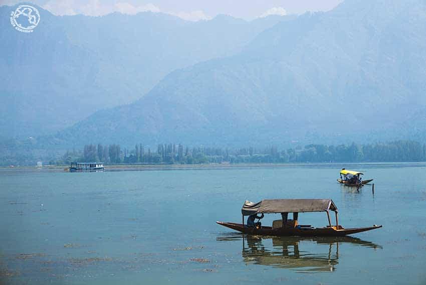 Srinagar, lago Dal, qué ver en India