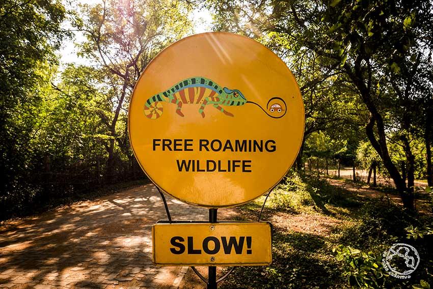 Señal de tráfico en Auroville