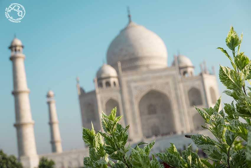 Que ver en un viaje a India en un mes