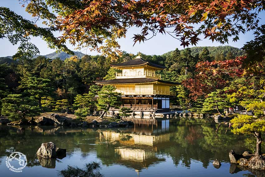 Templo dorado kioto
