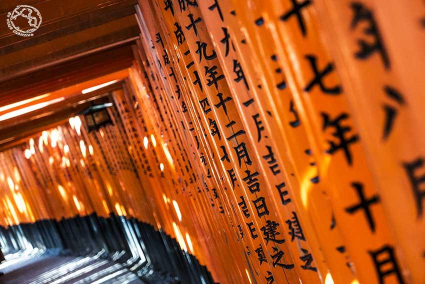 Templo fushimi inari Kioto