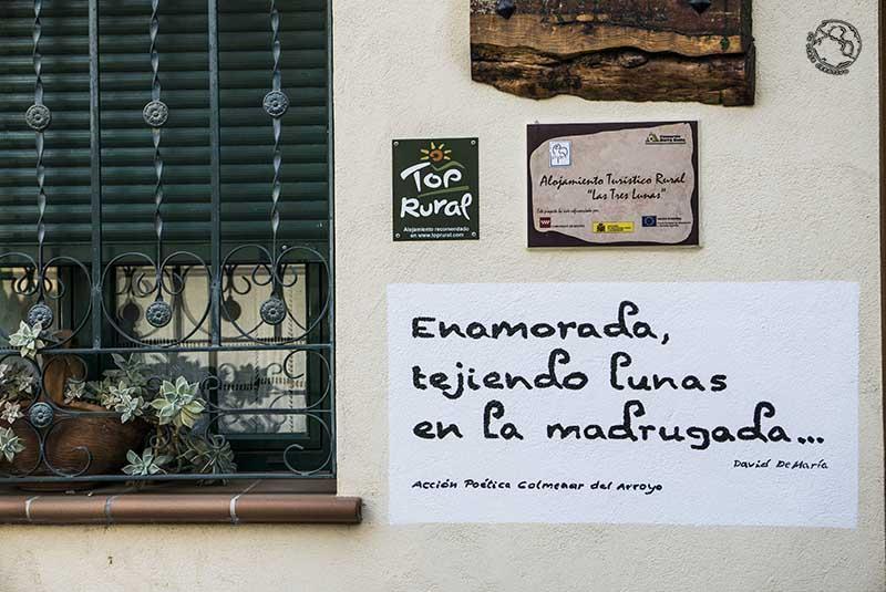 Acción Poética Madrid