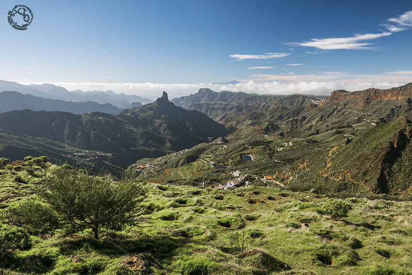 Viaje a Gran Canaria