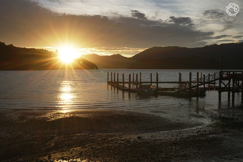 Atardecer Queen Charlotte Track