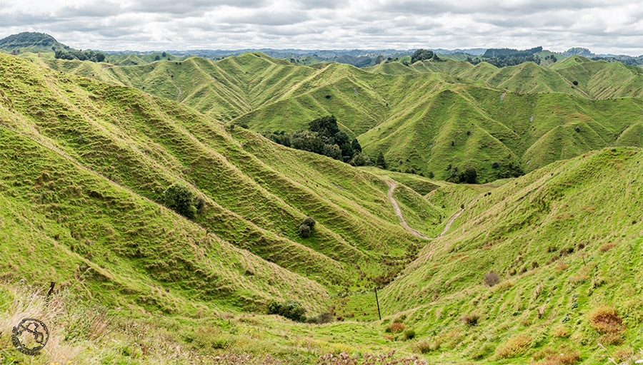viajar a Nueva Zelanda, la carretera del mundo olvidado