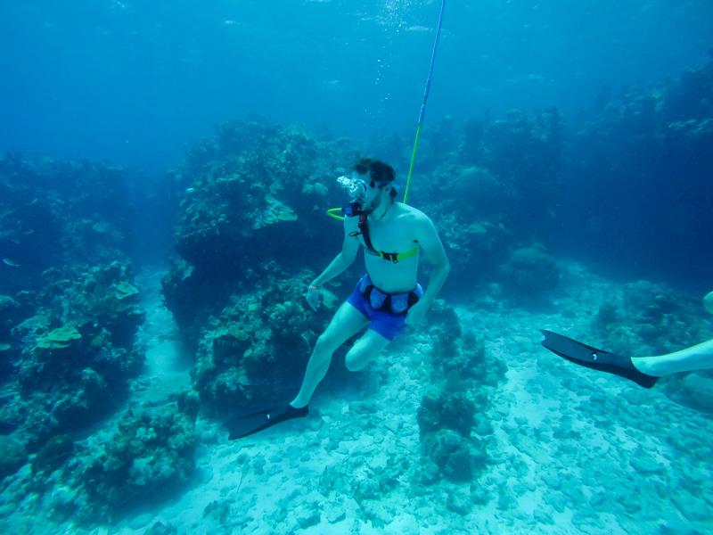 Jamaica Snuba Scuba caribe