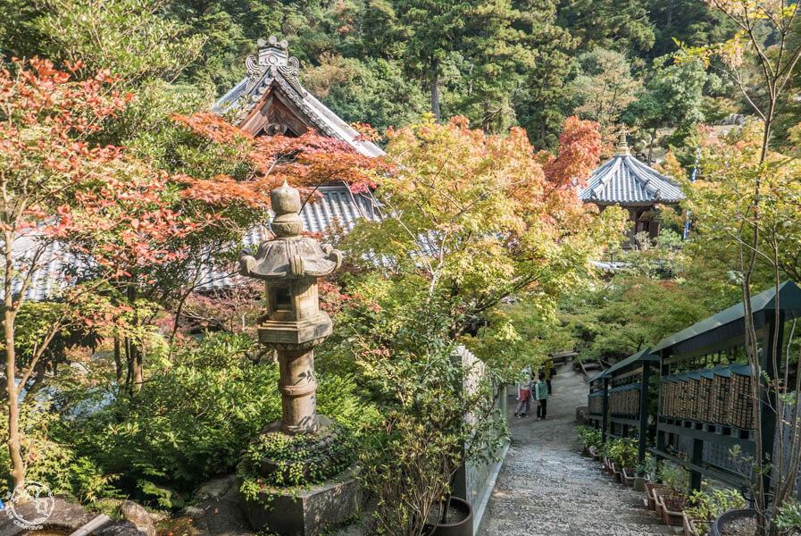 Qué ver en Miyahima en 1 día (6)