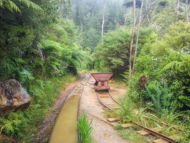 Lo mejor de Nueva Zelanda Isla Norte Paisajes (4)