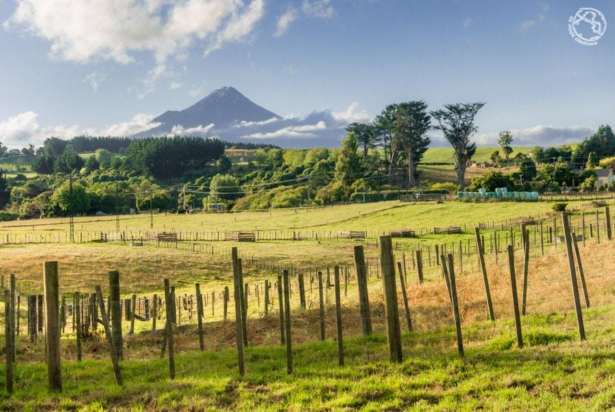 Lo mejor de Nueva Zelanda Isla Norte Paisajes (5)
