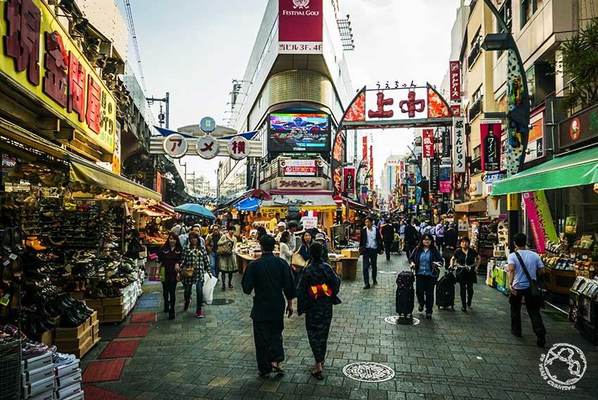 Japón en una Semana Tokio