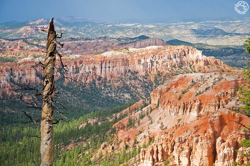 Consejos para visitar el Antelope Canyon en un día