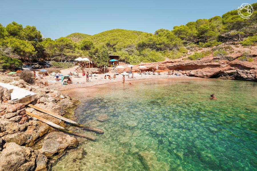 Calas de Ibiza Olivera