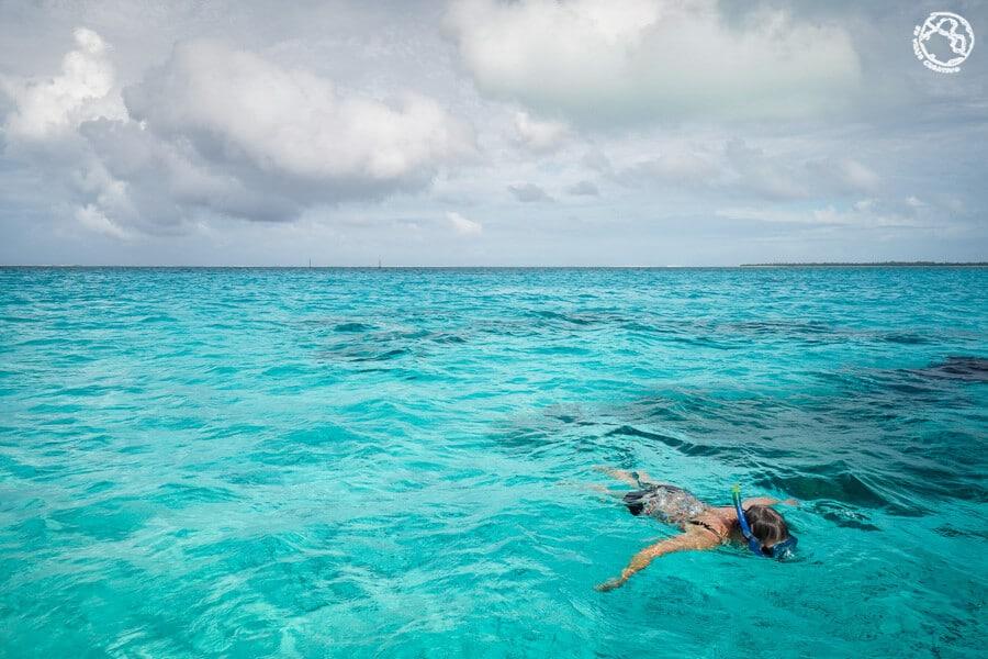 Tahiti Bora Bora buceo