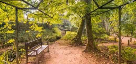 Jardín Botánico de Gijón precio